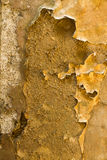 Distressed peeling wall paper and plaster background. Stock Images