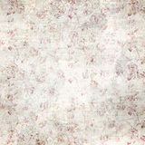 Distressed Red Rose Background Texture Stock Images