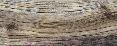 Distressed weathered wood texture Royalty Free Stock Images