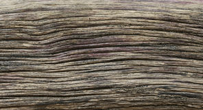 Distressed weathered wood texture Stock Photo