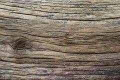 Distressed weathered wood texture. Extreme distressed weathered wood texture Stock Photography