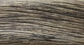 Distressed weathered wood texture. Extreme distressed weathered wood texture Stock Image