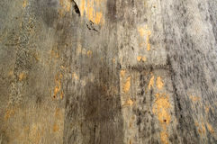 Distressed wood background Royalty Free Stock Images
