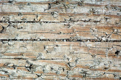 Distressed Wood 1 Stock Photo