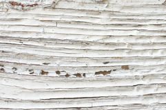 Distressed wood texture. Extreme distressed white painted wood texture close-up as background Royalty Free Stock Photo