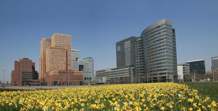 Distretto aziendale, Amsterdam Immagini Stock Libere da Diritti