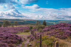 Distretto del picco di Derbyshire Immagini Stock