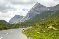 Distretto di Albula-passaggio, nelle alpi della Svizzera Immagine Stock Libera da Diritti