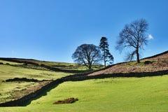 Distretto inglese del lago farmland agricolo fotografie stock libere da diritti