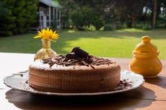 Distribución de la torta de chocolate en el parque Imagen de archivo libre de regalías