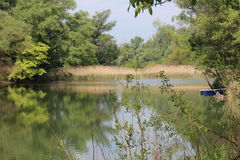 Distributaries del río Danubio cerca de BodÃky Fotos de archivo