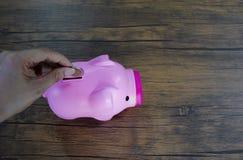 1 distributeur automatique de pi?ce de monnaie de rose de porc photos stock