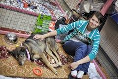 Distributie van liefdadigheidstentoonstelling van dieren van de schuilplaats royalty-vrije stock afbeeldingen