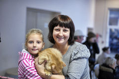 Distribution of charity exhibition of animals from the shelter Stock Photos