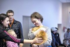 Distribution de l'exposition de charité des animaux de l'abri photo libre de droits
