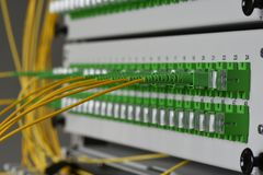 Distribution panel of fiber network with optical network cables. In datacenter royalty free stock image