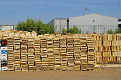 Crates distribution Stock Photography