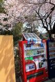 Distributore automatico cinese Fotografia Stock