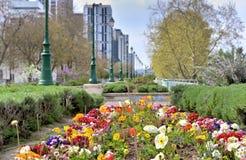 District des affaires le long d'un jardin avec des fleurs au printemps image libre de droits