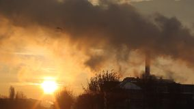 District heating power plant. Hot steam in the cold air morning at sunrise stock video footage