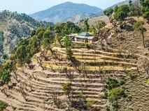 Districto Himachal Pradesh la India de Chamba Foto de archivo