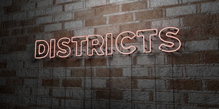 DISTRICTS - Glowing Neon Sign on stonework wall - 3D rendered royalty free stock illustration Royalty Free Stock Photos