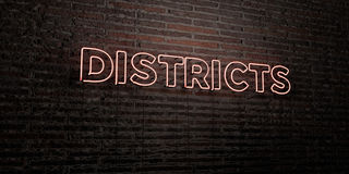 DISTRICTS -Realistic Neon Sign on Brick Wall background - 3D rendered royalty free stock image Royalty Free Stock Photography