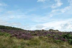 Distrito do pico da propriedade de Longshaw Fotografia de Stock