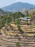 Distrito Himachal Pradesh India de Chamba Imagens de Stock