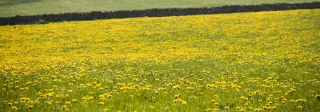 Distrito máximo de Inglaterra derbyshire Fotos de Stock Royalty Free