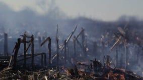 Distruzione ambientale ecologica di danno della natura video d archivio