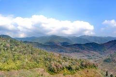Distruzione della foresta pluviale in Tailandia Immagini Stock