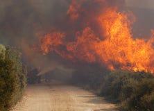 Distruzione e fuoco Fotografie Stock Libere da Diritti