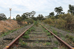 Disused and overgrown railway tracks. And sign Royalty Free Stock Photos