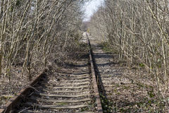 Overgrown Rail Track Royalty Free Stock Images