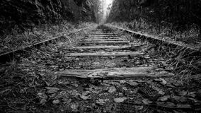 Disused railway tracks in countryside