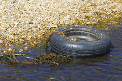 A disused tyre and rim polluting a small stream on the Solent Way beach on Southampton Water near Titchfield in Hampshire Stock Photo