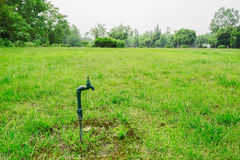 Disused water faucet in grassy lawn Royalty Free Stock Photography