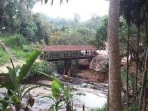 Dit beeld is echte foto van Sri Lanka stock foto's