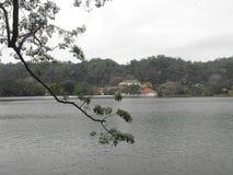 DIT IS BEELD MOOI SRI LANKA stock foto's