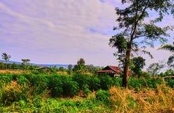 Dit beeld is over Thailand op land, Thailand Royalty-vrije Stock Afbeelding