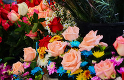 Dit beeld is over toenam in markt, Thailand Royalty-vrije Stock Foto