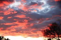 Dit is een beeld van de zonsondergang in zijn topogenblikken Stock Foto's