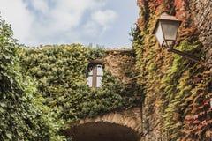 Dit is een mooie die mening van een venster door een klimmerinstallatie wordt omringd in het Spaanse dorp van Peratallada, in de  stock foto