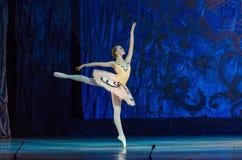 Dit eeuwige balletverhaal royalty-vrije stock foto