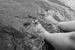 Dit foots в зеленой воде черно-белой стоковые фотографии rf