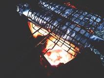Dit is geroosterde vissenomslag met aluminiumfolie, houtskool het roosteren Royalty-vrije Stock Fotografie