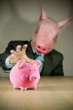 Dit Kleine Piggy. Stock Foto's