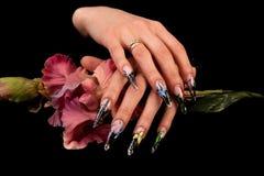 Dita umane con il manicure lungo dell'unghia isolato sul nero Immagine Stock Libera da Diritti