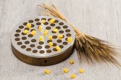 Ditali and wheat on extrude. Extrude (tool for making dough made of bronze and steel), a bunch of wheat and italian macaroni (ditali royalty free stock photos
